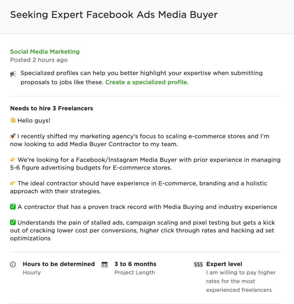 freelance digital marketing project description example