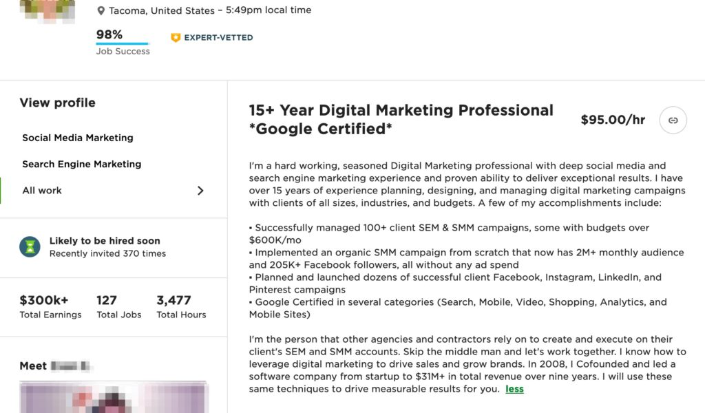 Upwork professional overview - digital marketing example 2