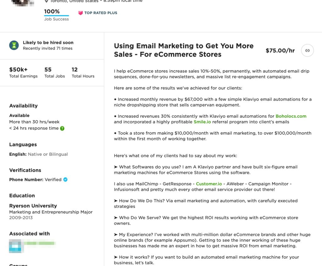 Upwork professional overview -  marketing example 2